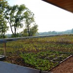 The science center's green roof