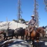 The cowboy with the horses and mules carrying our food and equipment