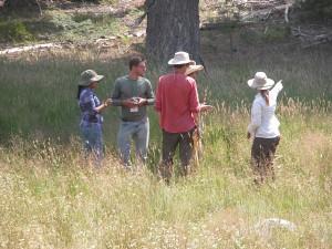 Matt, Cassy, Dave, and Chris with CNPS instructor Jennifer Buck