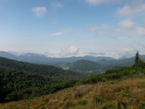 The view from Roan Mtn.