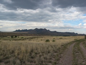 Grasslands on the Audobon Research Ranch