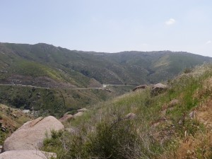 The view as we botanized along the San Pasquel Valley Trail