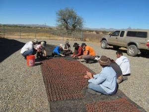 Making Seed Balls at Buenos Aires NWR