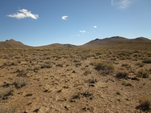 Sage brush as far as the eye can see in the Bodie Hills