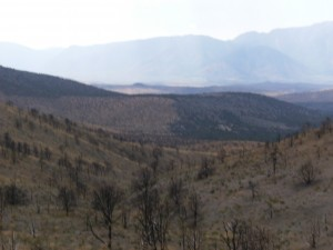 The view of the burn scars on the hill sides  from one of our monitoring site.
