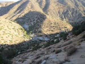 A view from the trail of the creek we went to survey for Arroyo Toads.