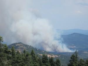 Oregon Gulch Fire
