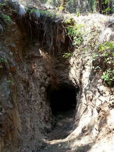 An open adit found during a recent mine inspection