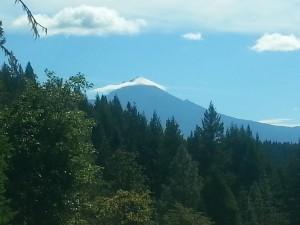 View of Mt. McLoughlin