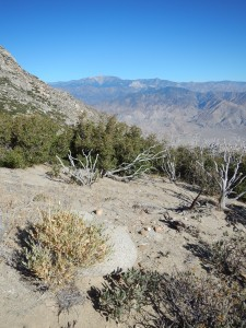 A view of the San Bernardino Mountains, north from the lower slopes of the San Jacintos