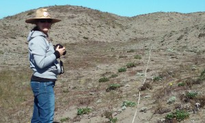 Jennifer Wheeler at the Samoa Dunes site