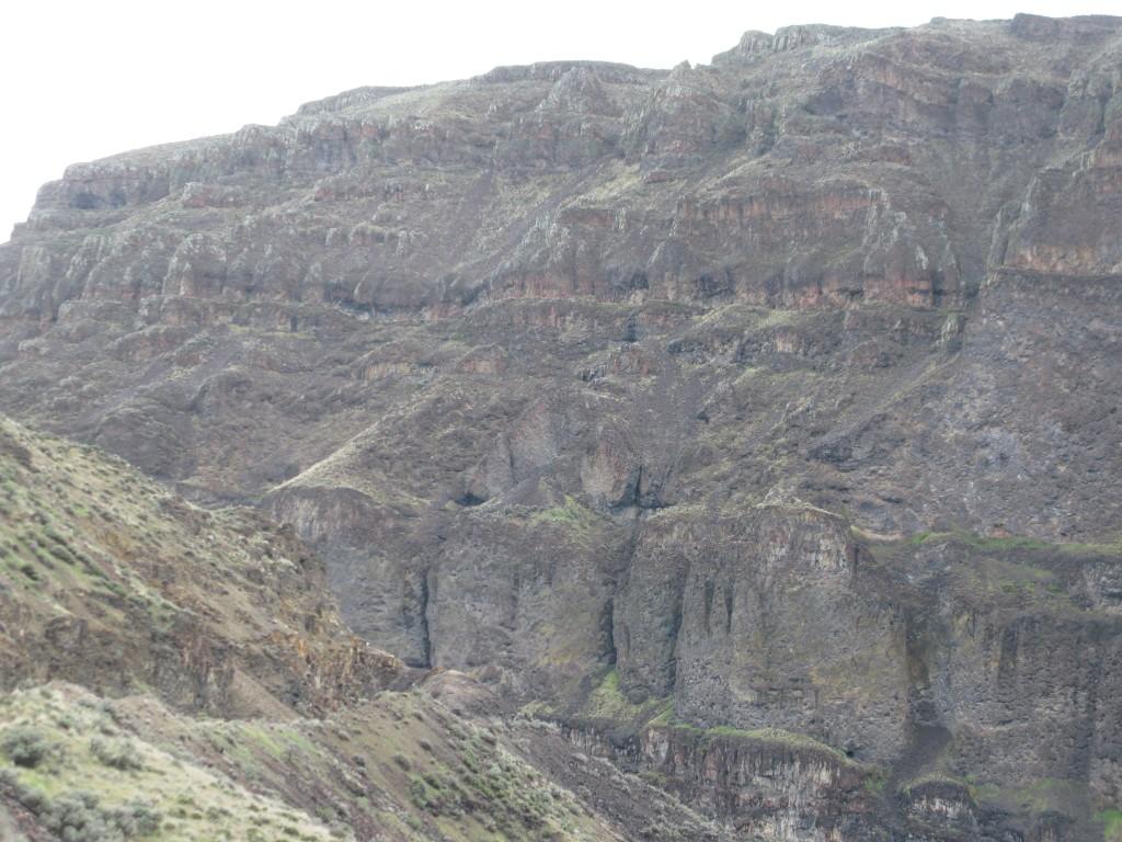 Douglas Creek Nesting Sites