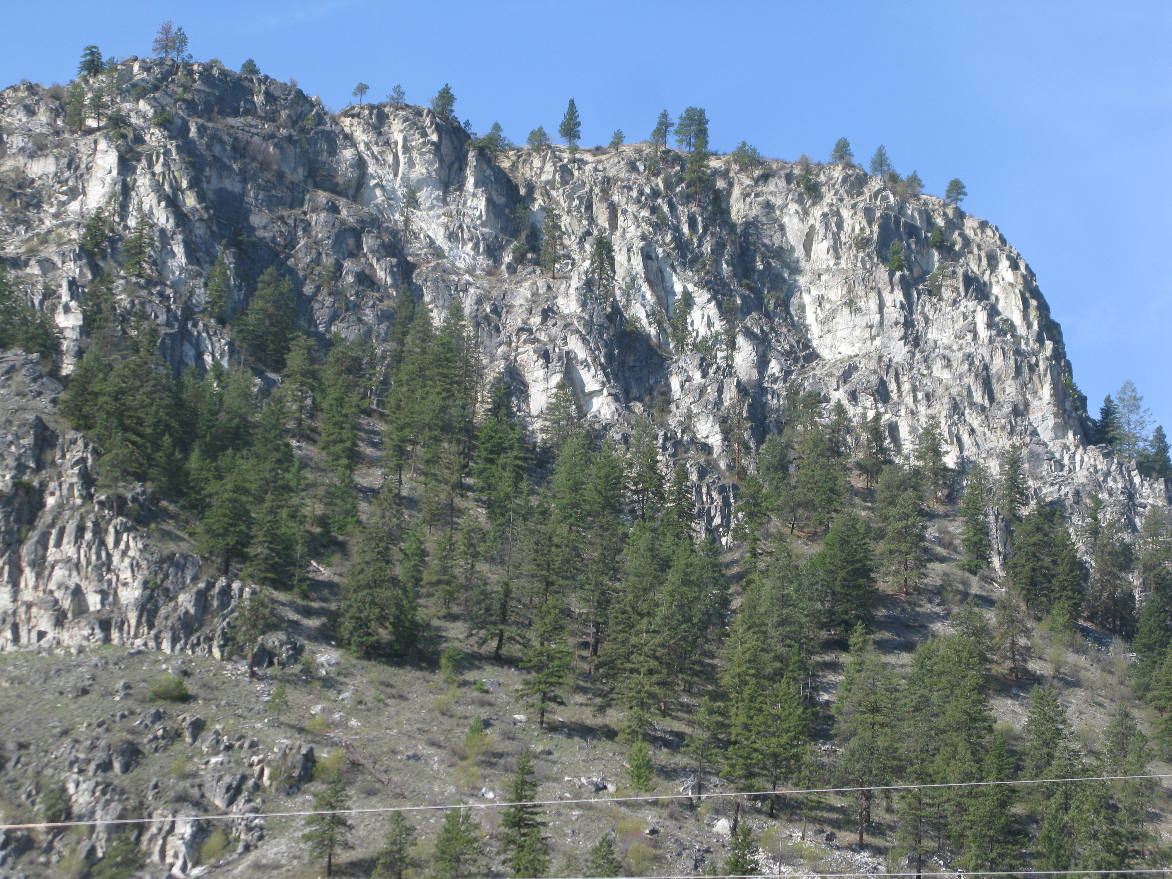 This is what we first see when we come to a site...Can you find the eagle nest???