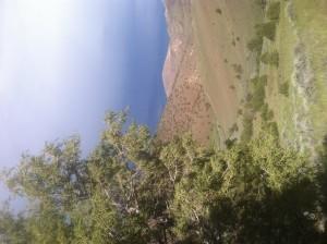 Hardscrabble allotment overlooking Pyramid Lake