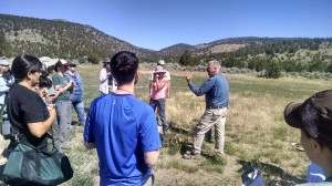 Field identification of grasses at the workshop