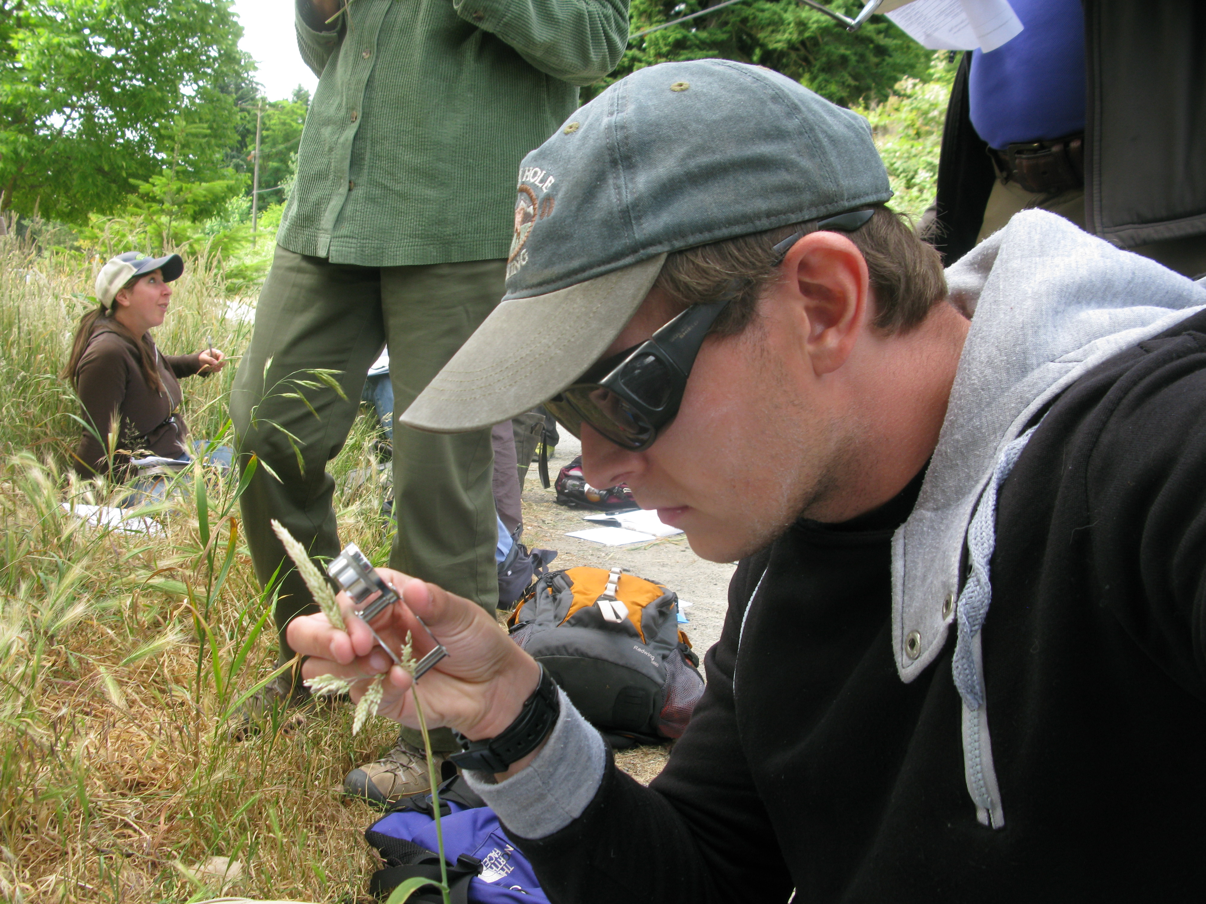 Grass identification is serious business!