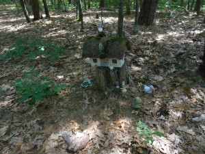 Wood gnome house, never know what you will find in the woods....