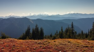 Olympic mountains, Olympic National Park, WA