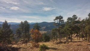 View with working outside of Montrose CO (I think)