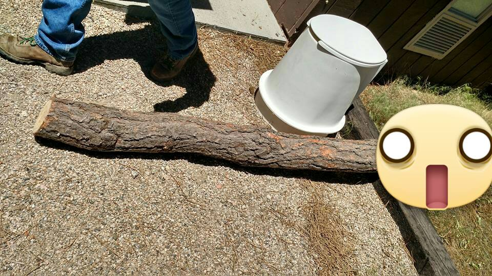 Bill and I finally got the log out!!!
