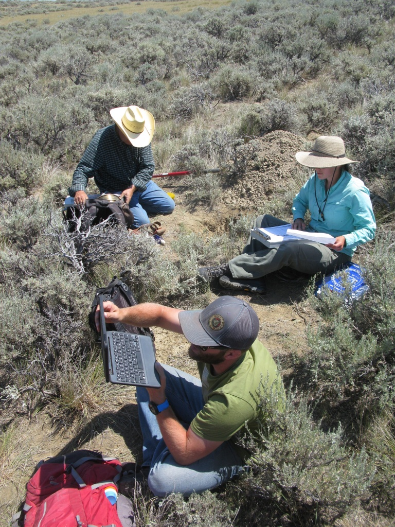 BLM Legends ready to do vegetation monitoring.