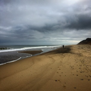 Slightly unrelated, but the scenery was too dramatic not to post. Cape Cod National Sea Shore a few weeks ago.