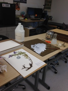 In the process of mounting, glue is painted onto the back side of pressed plants and then affixed to an herbarium sheet. Washers can act as weights to hold down unruly plants.