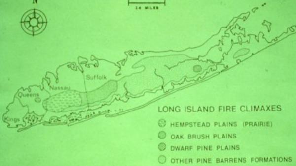 Credit: Long Island Pine Barrens Society
